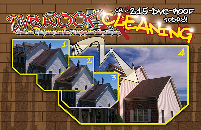 DVC Roofing offers Roof Cleaning